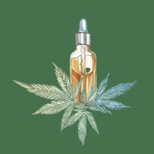 cbd huile oil de cannabis