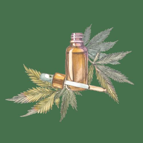 huile de cbd cannabis
