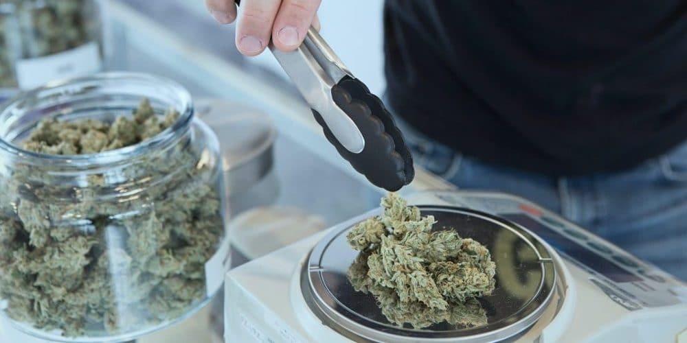 légalisation cannabis europe
