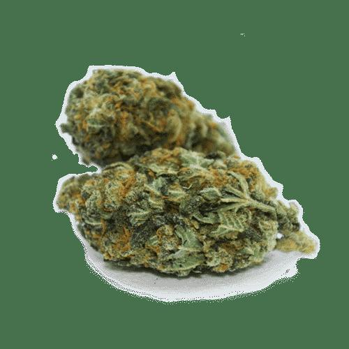cbd amnesia weed