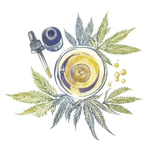 fleur cbd cannabis