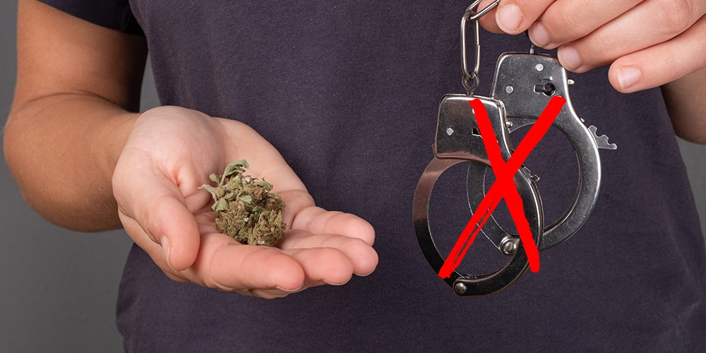élus médecins réclament légalisation cannabis