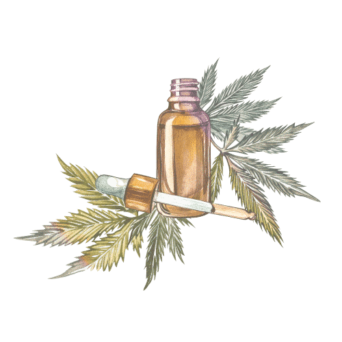 cbd cannabis soin creme cosmetique