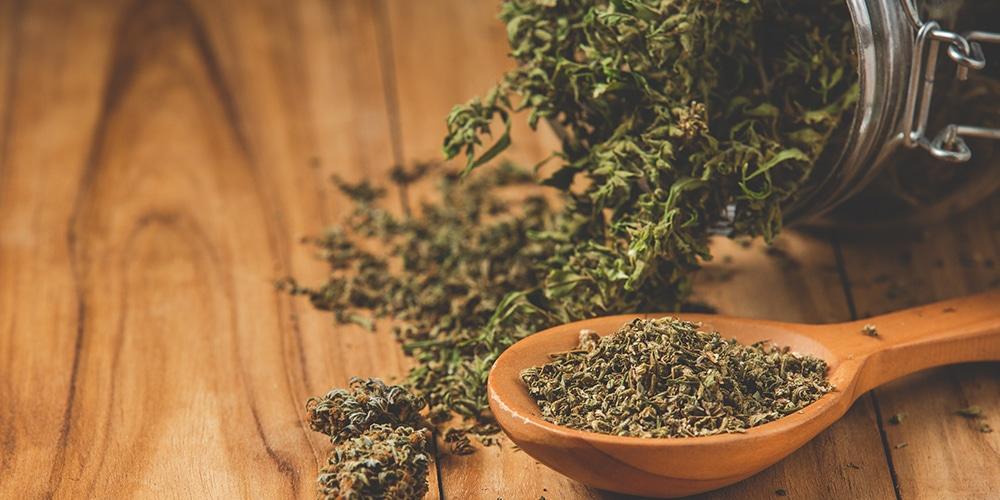 Comment conserver cannabis